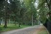Светлогорск, дорога к санаторию