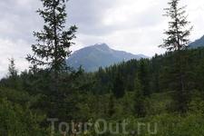 Вершина 2108.0 м. Вид из долины р. Орзагай