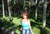 В Лоро парке есть пальмовый лес.