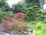 Китайский садик Тиволи