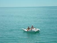 Отдыхающие-водоплавающие