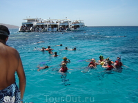Красное море. Остров Тиран.