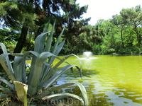 Посреди пруда - небольшой фонтанчик, на берегу - бурная растительность.