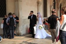 Невеста и жених идут на фотосессию, девушка очень смущалась, т.к. конечно оказалась в центре внимания...