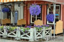 Летние террасы и цветы . Очень приятная обстановка.