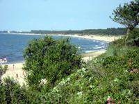 Пляж возле ветряков