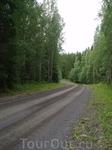 Дорога к коттеджу тихая и уютная, хотя и грунтовая