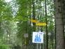 указатели по парку,в частности к мосту Марии,к которому не смогли из-за погоды три года назад, подойти.