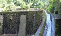 Храм Менгенинг