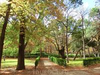 Нам очень повезло с погодой, по солнышку так приятно прогуляться в парке.