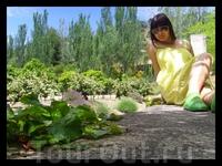 зелени хоть отбавляй..=))))