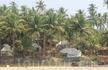 Бунгало на пляже Кола