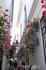 Мы попали в Крдобе на ежегодный конкурс и праздник цветов.