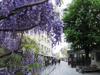 Главная улица столицы – Штедле. Уютненько.