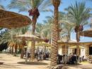 Фото Dessole Seti Sharm Resort