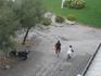 Три последних фото были сделаны с балкона. Обожаю наблюдать за местными жителями.