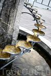 В самом центре Аурланда - оригинальный фонтан