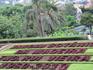 На фуникулере добралась до Ботанического сада Мадейры