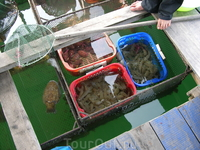 рынок в открытом море в Халонге