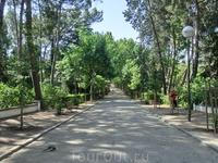 Кроме фруктового сада здесь есть большое зеленое пространство, где приятно гулять жарким летним днем.