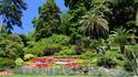 Как и в любом ботаническом саду имеются таблички,но кто на них смотрит,когда вокруг такая красота!