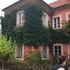 дом,  весь оплетенный плющом, очень романтично)
