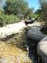 Тунис: День в зоопарке - Friguia Park