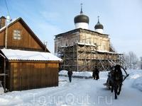 Лошадка классно вписалась в зимний деревенский пейзаж