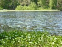 Юкки, Тохколодское озеро