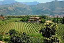 Агритуризмо - очень популярный в Италии вид размещения туристов в сельской местности для более близкого знакомства с природным, историческим, культурным ...