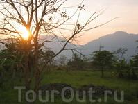Север Таиланда - это зеленые горы и поля, если бы не пальмы, то очень напоминало бы среднюю полосу России