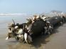 Вунгтау.Пляж