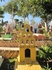 даже кладбище у мексиканцев веселые