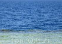 Красное море: глубоководье и мелководье