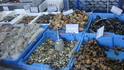 На рыбацком рынке