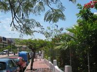 Канарские острова. Тенерифе. Курорт Лас Америкас