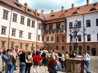 Мирский замок построен в начале XVI века в городском поселке Мир (Кареличский район) магнатским родом Ильиничей. С 1568 года принадлежал Радзивиллам, потом ...
