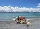 Тибет 2014 г.Дорога к озеру Намца