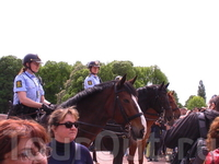 Конная полиция обеспечивает порядок во время развода караула!