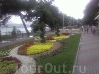 цветы, клублы,  сосны, море - это и есть Геленджик....