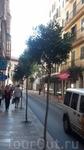 Улица Пальмы