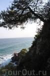 прогулка вдоль побережья