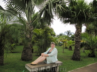 На аллеи Ботанического сада
