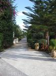Cretan Malia Park-лучший отель Малии