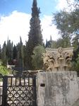 Возле Гефсиманского храма