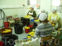 ферма где делают сладости