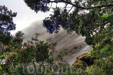 Выходим на скалы. Отсюда начинается самая высокая виа феррата в мире. Видел ее начало и общий маршрут на схеме - очень круто!