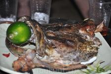 Голова местной рыбы - Лапу Лапу