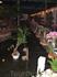 ресторан Ботанический сад.