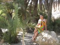 Пальмы пляжа Вай
